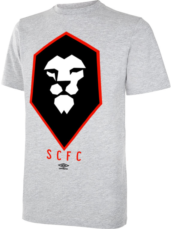 SALFORD CITY FC TRAINING PRINT TEE