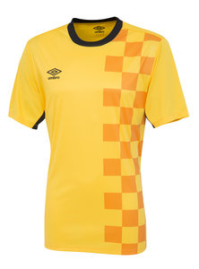 View the STADION JERSEY SS from the Teamwear collection