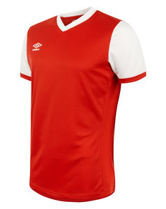 View the WITTON SS JERSEY from the Teamwear collection